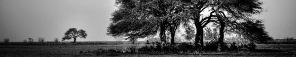 cropped-dsc_0127-editar.jpg