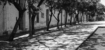 Calle de Alta Gracia
