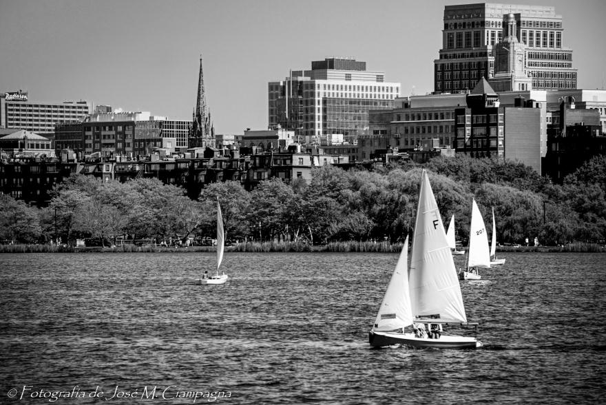Veleros en el río Charles Eb B/N, Boston, USA.