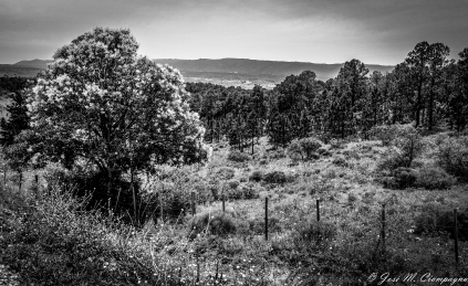 Sierras de Córdoba en blanco y negro foto 1