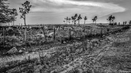 Foto de las sierras de Córdoba en blanco y negro foto 2
