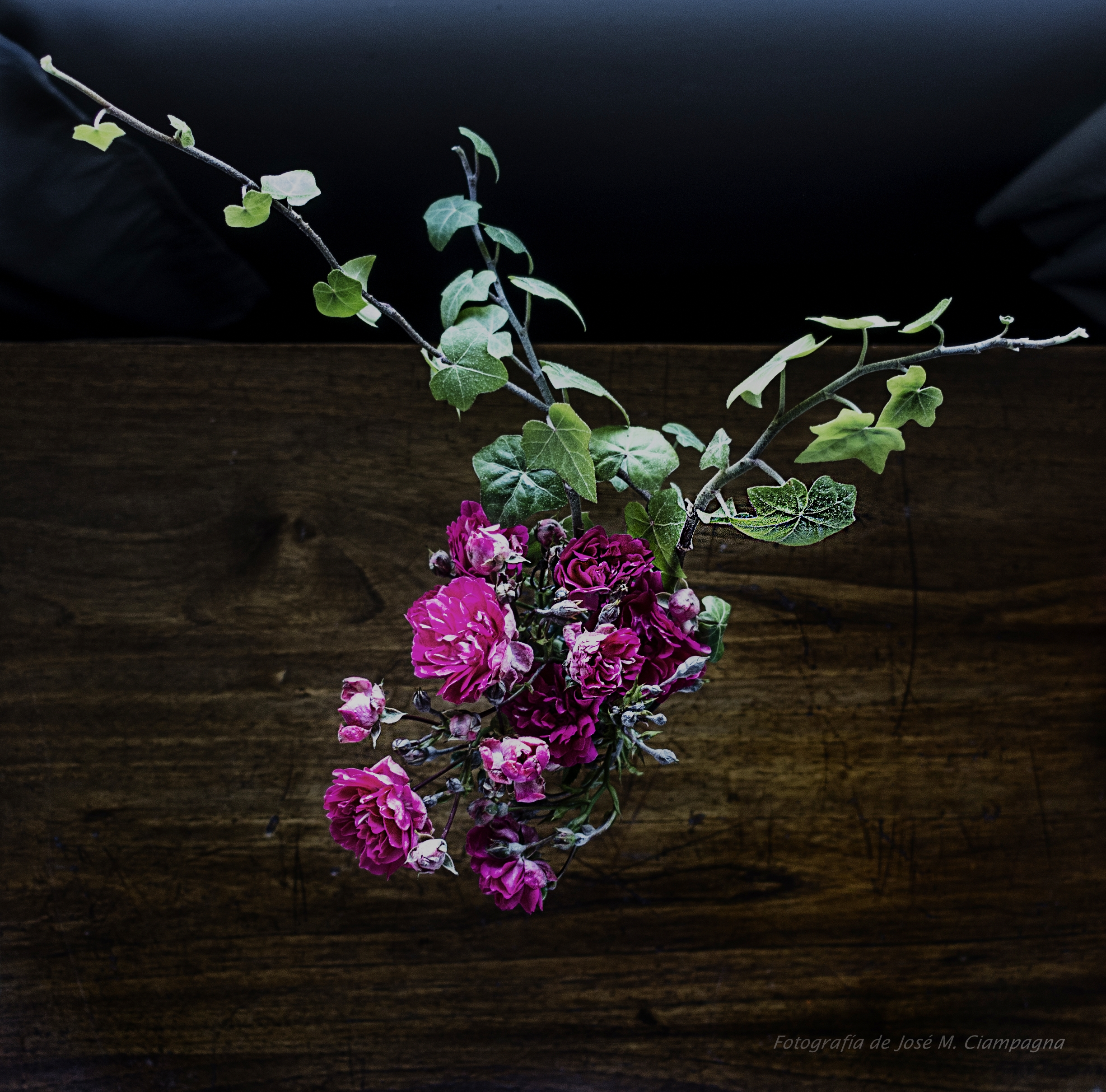 Naturaleza muerta de flores