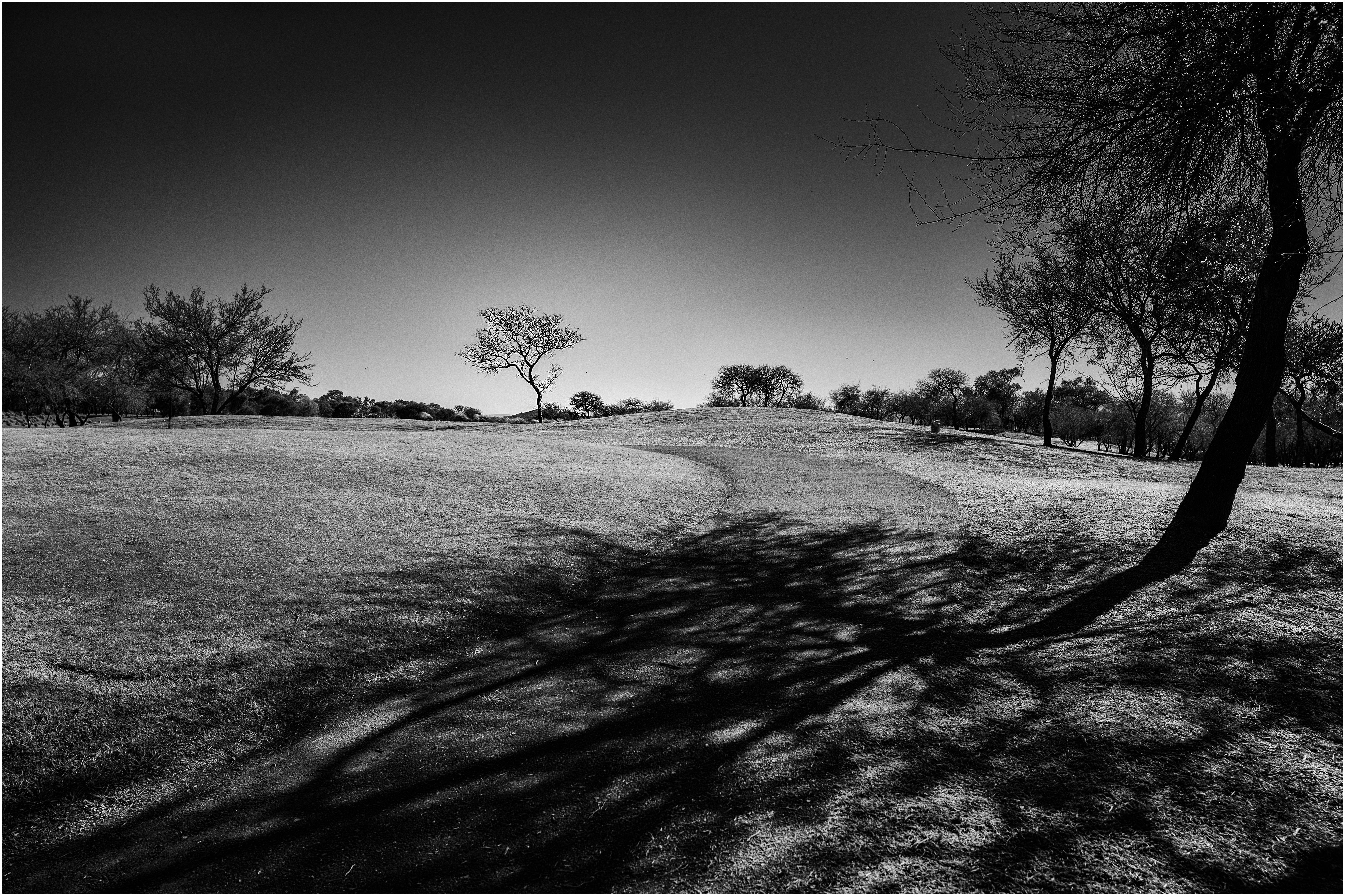 El caminito al árbol. Cercanías de Alta Gracia, Córdoba, Argentina