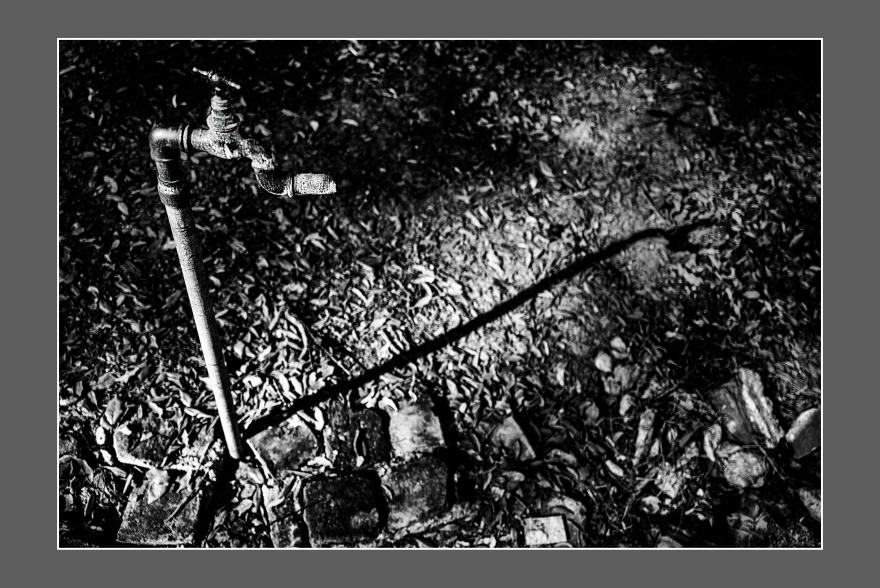 La sombra de la canilla