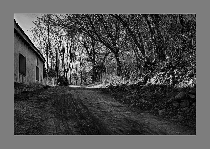 Subiendo la calle rural, Las Rabonas, Córdoba, Argentina