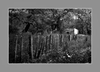 La casa abandonada. Ea.Teodoro, Río Primero, Córdoba, Argentina. Diciembre 2016