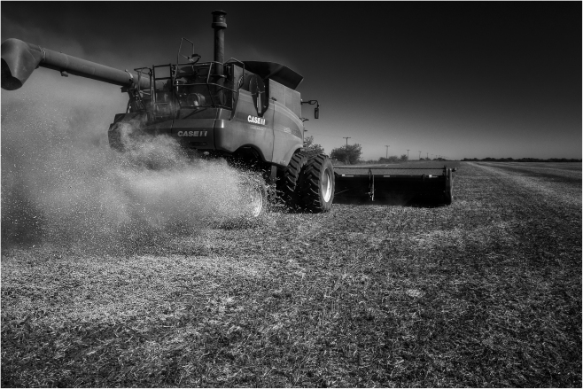 """""""La cosechadora"""", zona rural de Río Primero, Córdoba, Argentina."""
