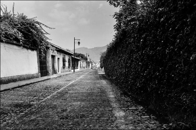 La bella Antigua