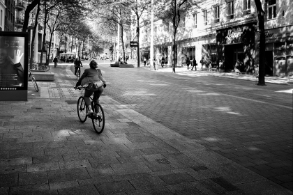 La Avenida vienesa
