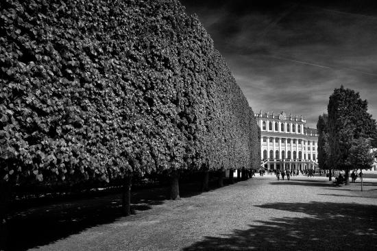 El parque del palacio Hasburgo