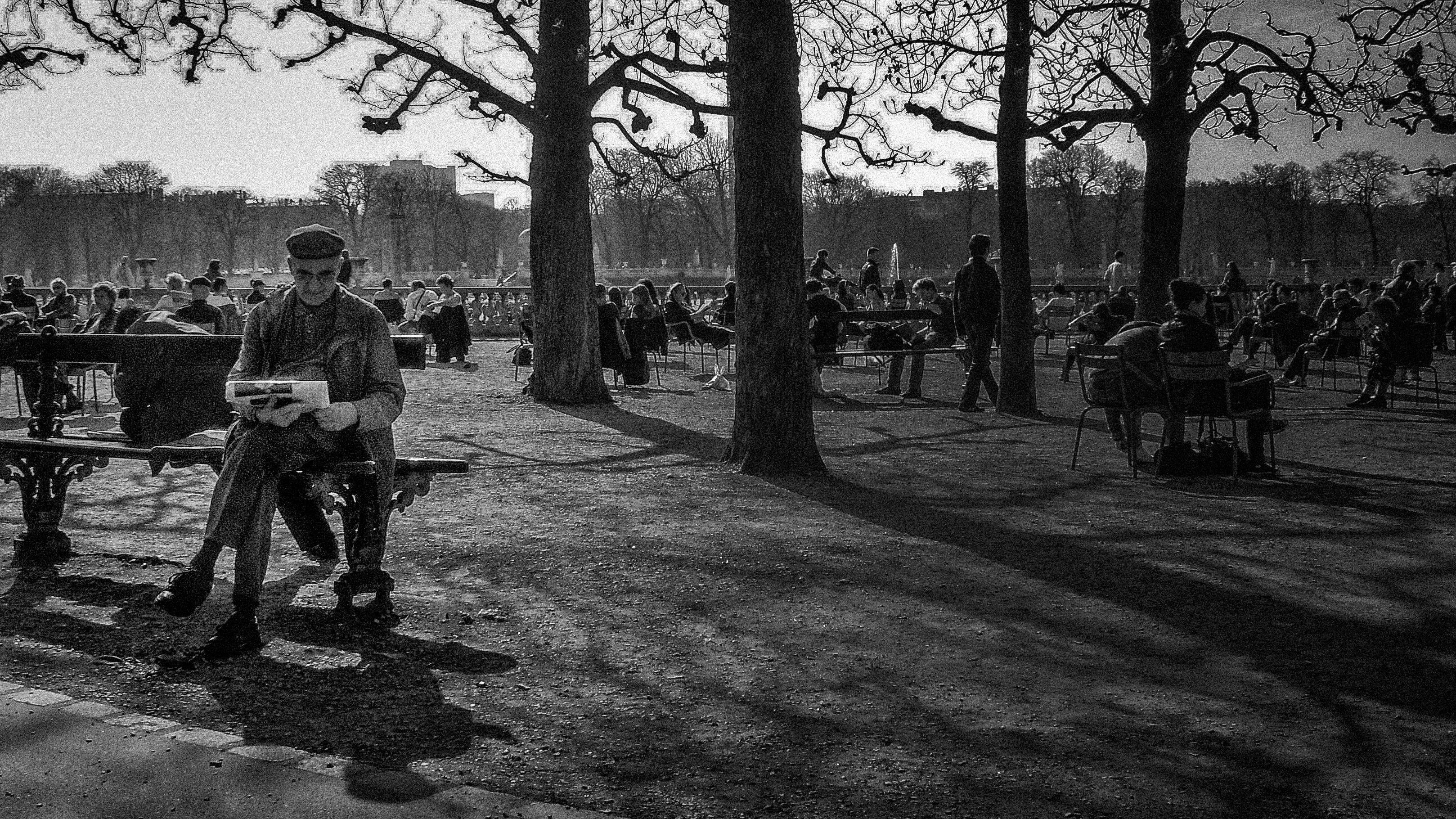 El lector en Paris